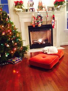 Christmas in our new house! (This is Violet's friend, Pua, who we baby-sat over Christmas).