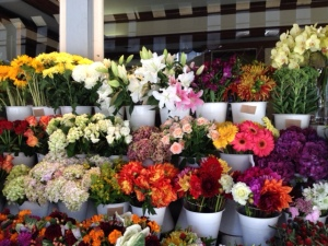 A flower shop we passed on our shopping tour.