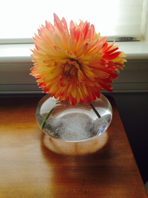 Flowers from my garden for our guest room. We have a special visitor this weekend - Tommy's mom!